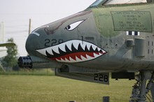A predatory war bird: The A-10 Warthog